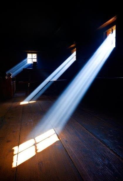 luz 11