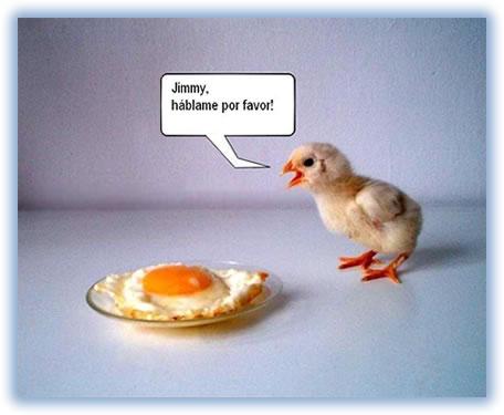 pollito-y-huevo