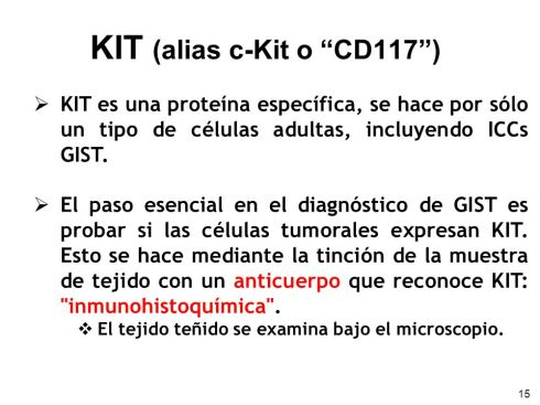 KIT+(alias+c-Kit+o+CD117+)