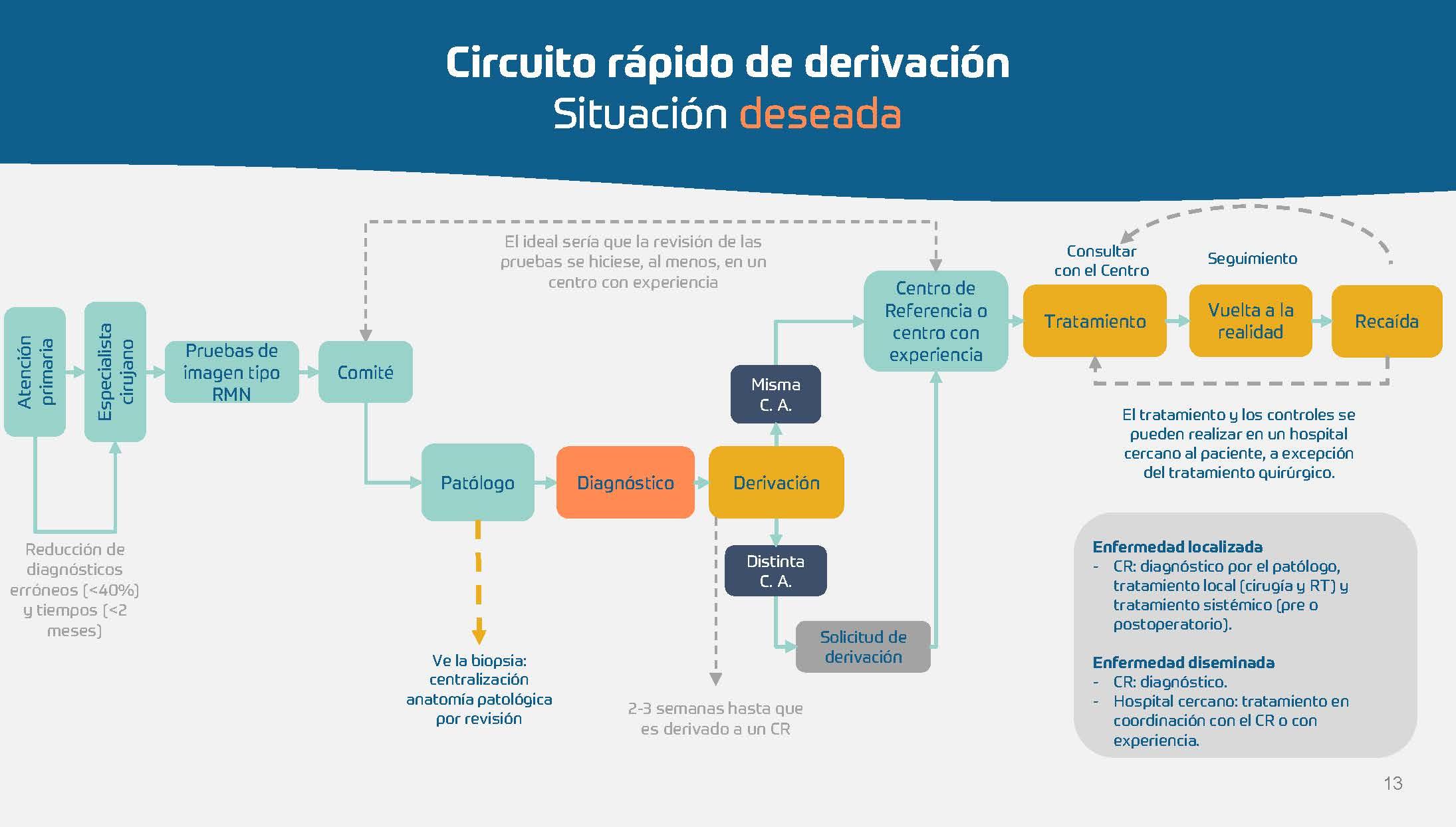 Sarcoma - Hoja de ruta para las CCAA_Página_13