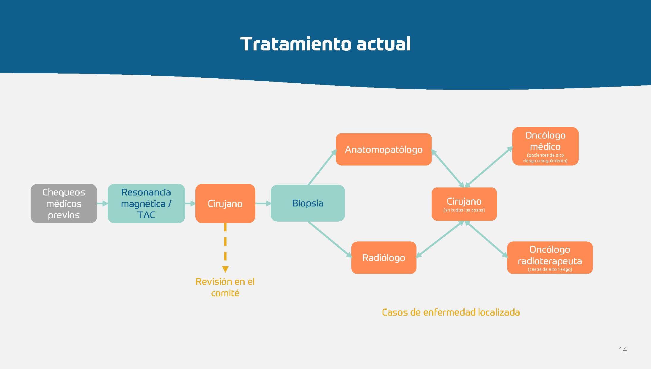 Sarcoma - Hoja de ruta para las CCAA_Página_14