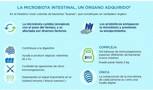salud-probióticos-Paradigma-Pel