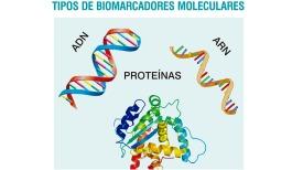 TIPOS-DE-BIOMARCADORES-MOLECULARES-OK