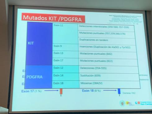 IMG-20191221-WA0012